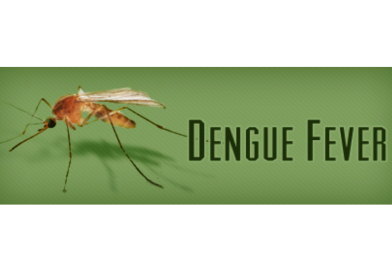 Best to avoid platelet transfusion in dengue